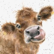 Wrendale Mooooo Cow Greeting Card